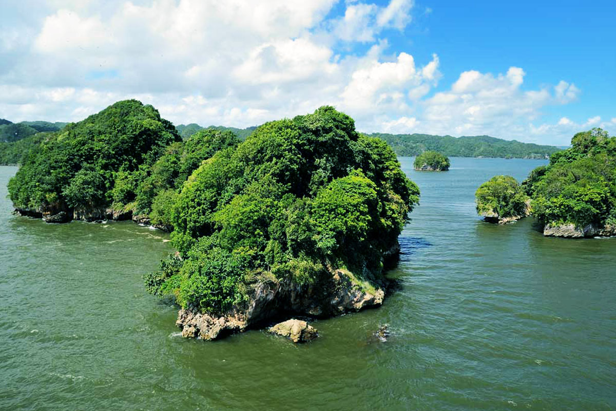 Los Haitises National Park Tour from Las Terrenas, Samana.